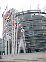 borse stage commissione europea 2010
