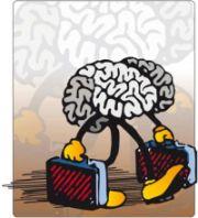 Fuga cervelli Fondazione Sud 2009