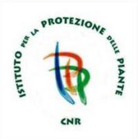 Borsa studio CNR