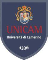 Unicam School of Advanced Studies boom domande 2009