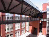 Università Catanzaro false lauree Giurisprudenza