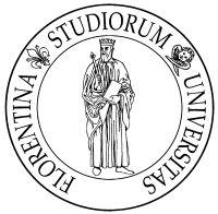 università Firenze borsa studio