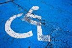 borsa studio disabili Marche