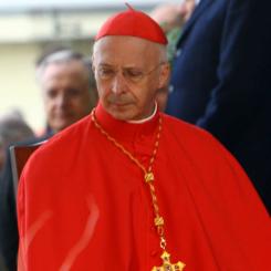 Il cardinale Bagnasco