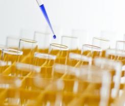 tirocini farmacia chimica biotecnologie