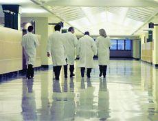 borsa studio laureati medicina chirurgia