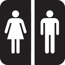 dormitori single sex
