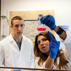 giovani ricercatori