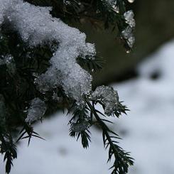 Neve, ancora molti gli atenei chiusi