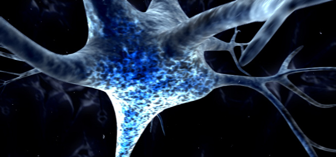 ricerca cinese urina trasformata in cellule neurali