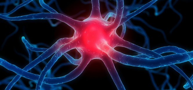 Parkinson diagnosi precoce grazie ad analisi del sangue