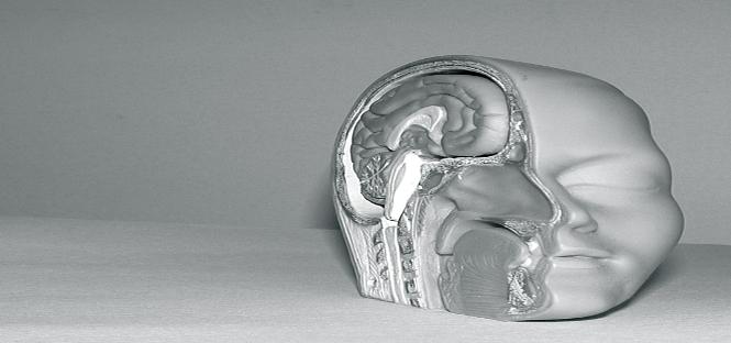 gelosia stalking corteccia cerebrale