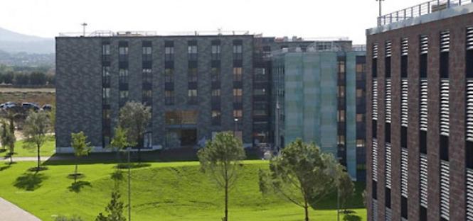 Roma per i fuori sede poche residenze e affitti alle stelle