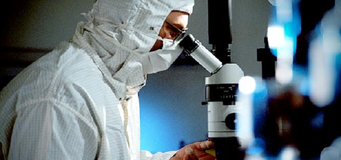 i dottori di ricerca dell'alma mater trovano più impiego all'estero