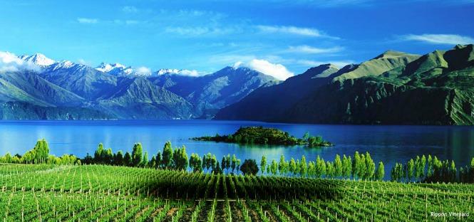 Borse di studio Nuova Zelanda 2013