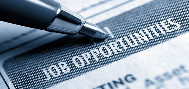le lauree piu richieste nel mercato del lavoro