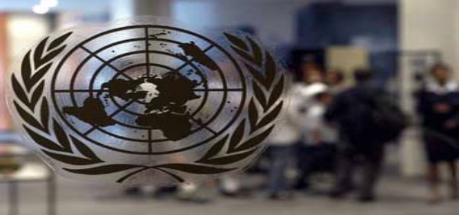 Tirocini ONU Svizzera 2014