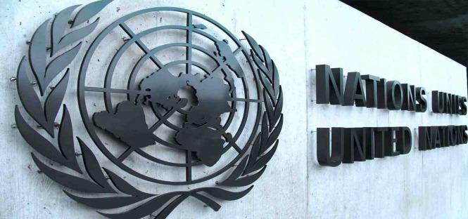 borse di studio ONU Roma 2014