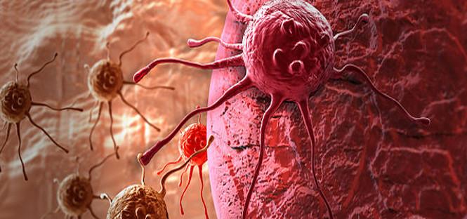 scoperto motore dei tumori