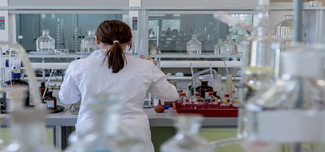 aumento dottori di ricerca assunti aziende