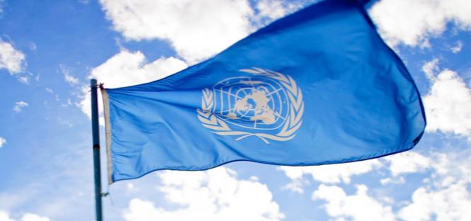 ONU Fellowships Programme 2018